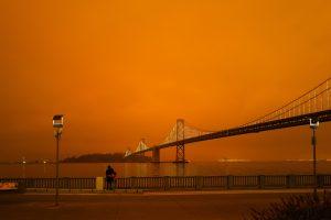milkovi SF Bay Bridge