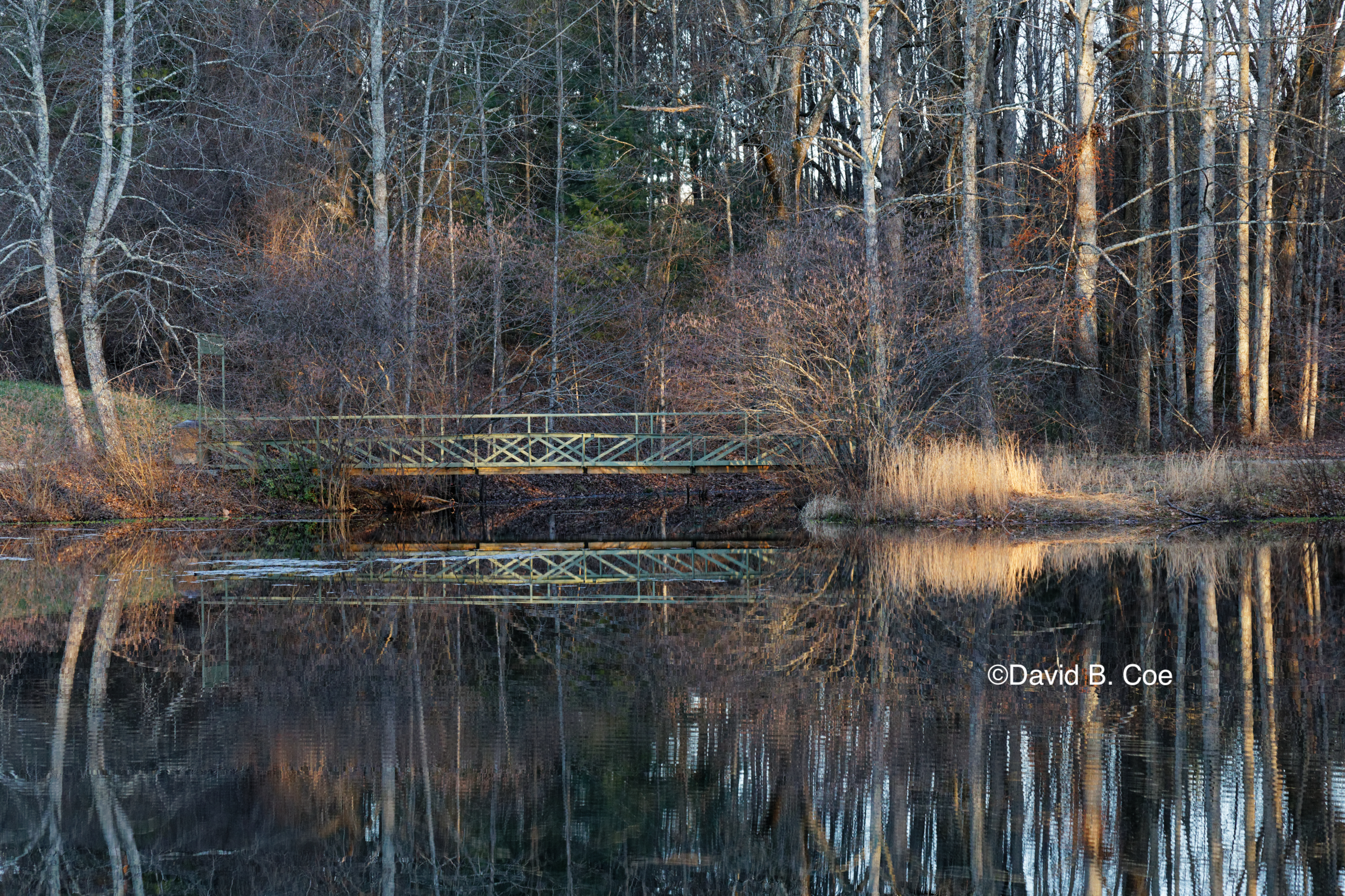 Walking Bridge at the Golden Hour, by David B. Coe